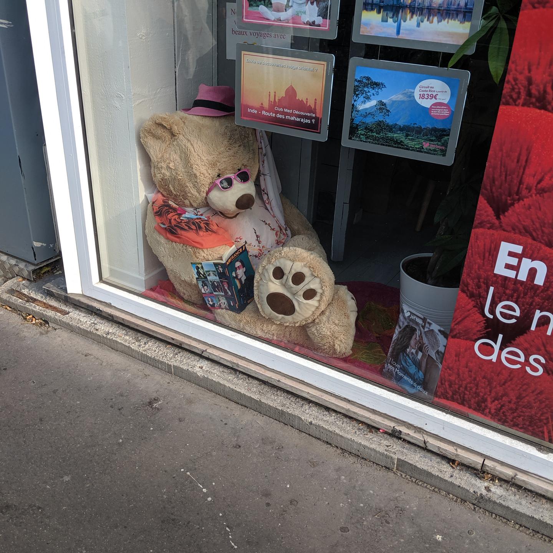 Paris Teddy Bear On Vacation