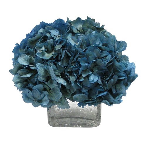 Preserved Hydrangea in Glass Crackle Vase
