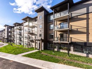Ivy Rd - Phase 1 & 2 (Moncton, NB)