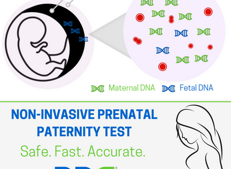 Advanced Paternity Test during pregnancy - Certainty Test