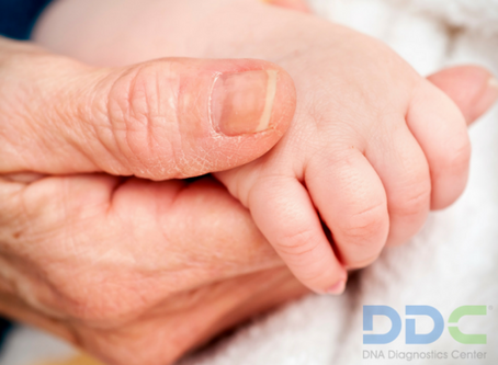 Určenie biologického otcovstva bez vzorky domnelého otca