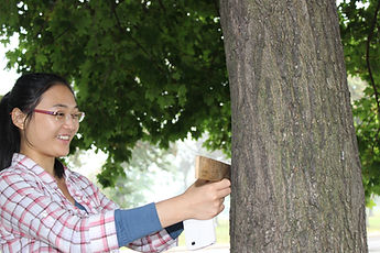 happy asian woman in a red and white plaid shirt measuring a tree
