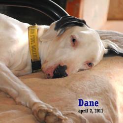 Dane - April 2, 2011