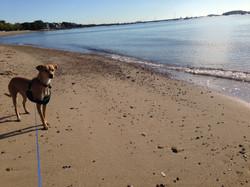 Cindy at Beach