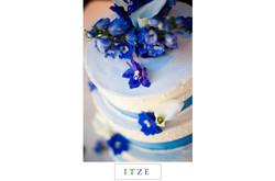 CT wedding photo cake