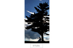 CT wedding photo silhouette with tree Lyman Orchards