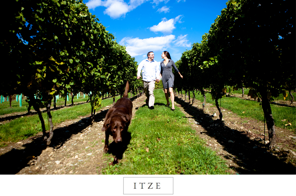 CT engagement photo with dog labrador retriever in vineyard Jonathan Edwards Winery