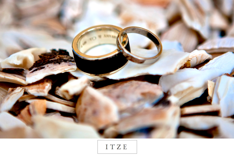 CT wedding photo rings on seashells at the beach