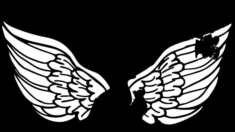 Baumann Logo (2).png