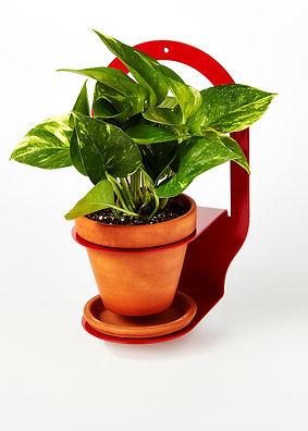 Plant Bracket