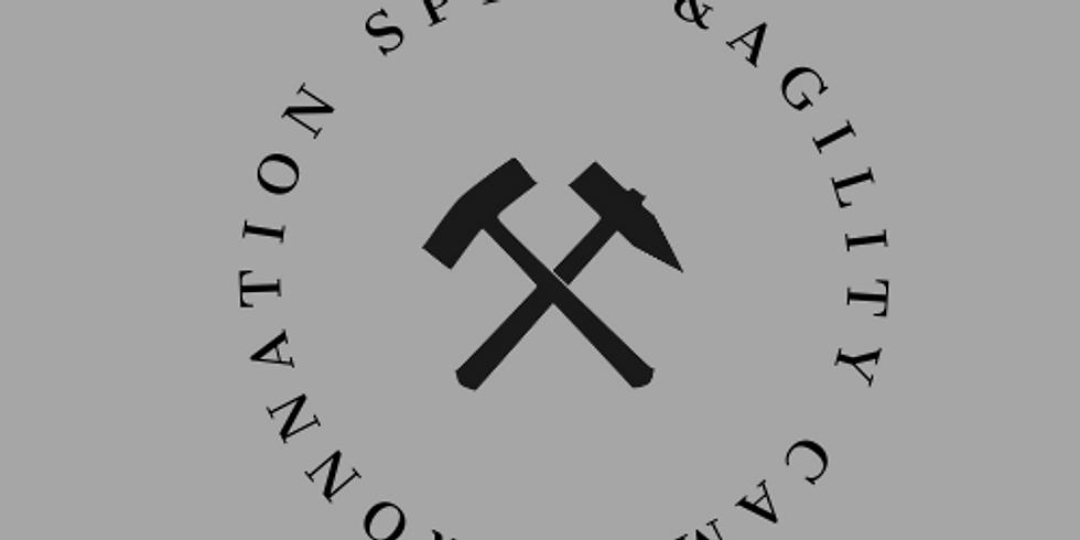 Iron Speed & Agility Camp