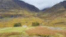 scot highland 2016 1.jpg