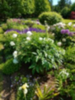 GRIMM Upper Perennial Garden 6.18.jpg