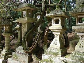 Kasuga Shrine.jpg