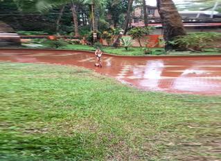 Monsoons: Raincoat vs Umbrella