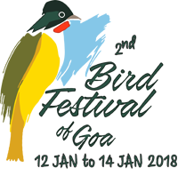 Bird Festival of Goa 2018