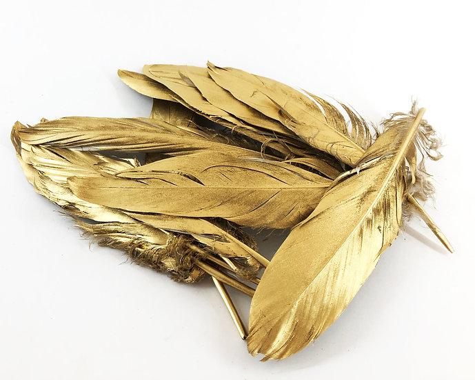 Gold Federn M 12 Stück  16-18cm