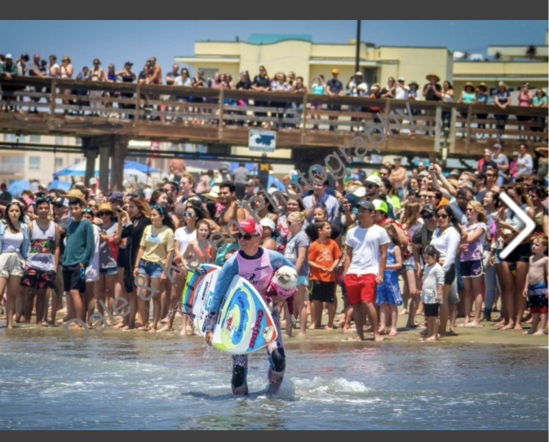 2018 Imperial Beach Surf Dog Event