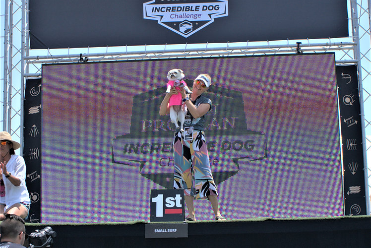 Purina Incredible Dog Challenge #2.jpg