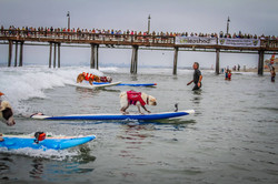 2015 Imperial beach Surf Dog Event
