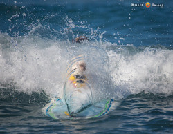 2015 Surf Dog Surf A Thon -3rd Place
