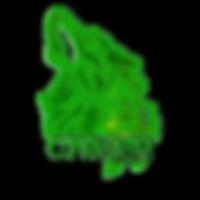 cypher_v2.png