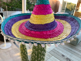 Cactus and Mexican hat