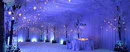 How much does a wedding venue cost?
