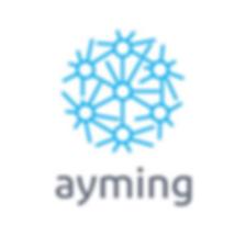 Visuel Site Logo aYMING.png