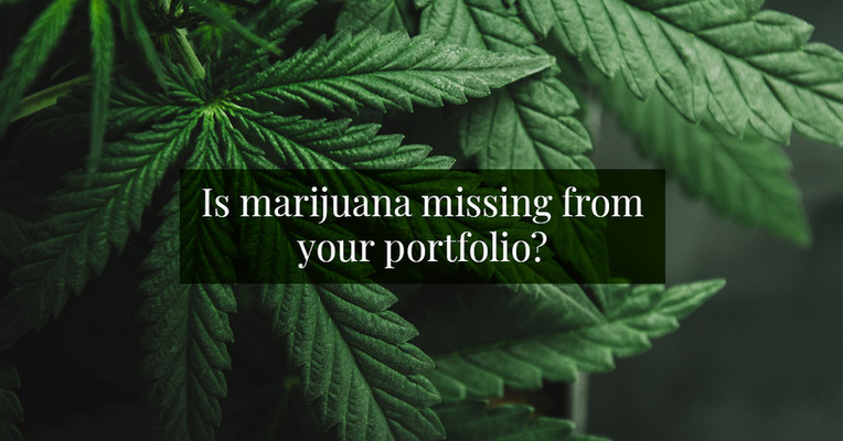 Is Marijuana Missing From Your Portfolio?