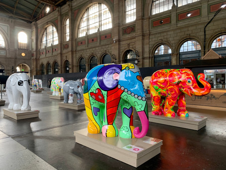 Elephant Parade | Where Art meets Business and Conservation!