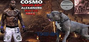 Muay Thai sponsors
