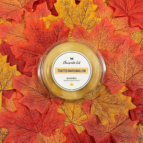 Segment Pots: Autumn Limited Editions