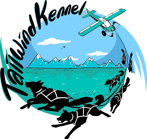 Tailwind Kennel Knik Alaska