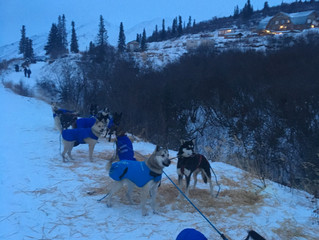 Alpine Creek Lodge a necessity for early sled training