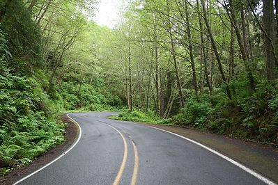 road-61904_1920.jpg