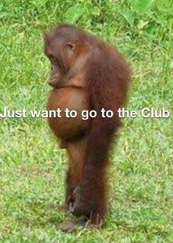 Olivera the Orangutan