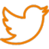 twitter-social-outlined-logo-60x60.png