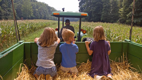The Best Family Farms Near Los Angeles 2021! (Updated for Covid-19)