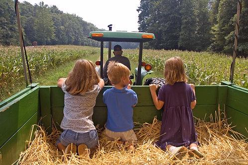 Un giorno da contadino