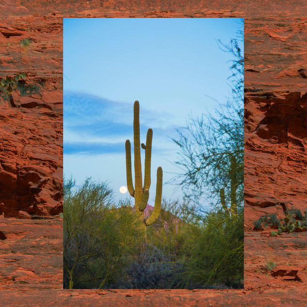 Arizona photo series