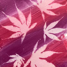 Red acer sun print 1