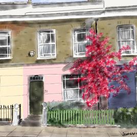 Leverton Street house with cherry tree