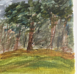 Graffham woods acrylic