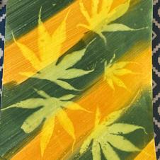 sun print green and yellow acer medium.jpg