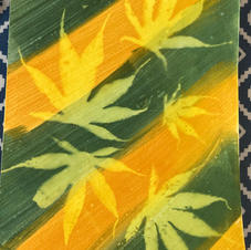 Sun print green and yellow acer leaves