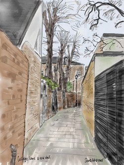 College Lane & Old Wall