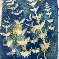 wet cyanotype turmeric.jpg