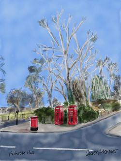 Primrose Hill telephones