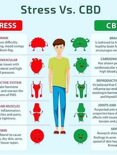 Stress Vs. CBD
